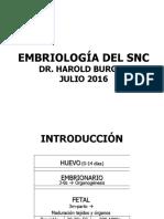 EMBRIOLOGIA DEL SISTEMA NERVIOSO (1)