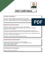 CV Numero 1.doc