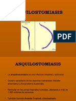 Anquilostomiasis 1