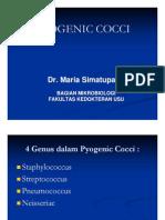 Bbc215 Slide Pyogeniccocci