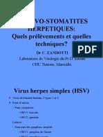 GINGIVO-STOMATITES- IDE2008-zandotti.pdf