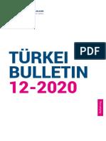 Türkei-Buletin 12-2020