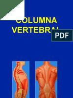 Columna vertebral Aspectos Generales