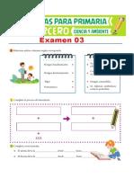 Examen-03-de-Ciencia-y-Ambiente-para-Tercero-de-Primaria.pdf