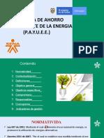 politica del medio ambiente 5 - P.A.Y.U.E.E..pptx