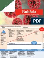 HISTORIA NATURAL DE LA ENFERMEDAD RUBEOLA.pptx