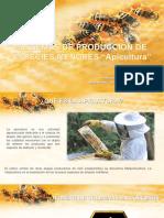 Introduccion a la Apicultura.pdf