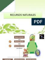 RECUSOS NATURALES CAPITULO 1.pdf