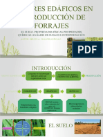 S 5 FACTORES EDÁFICOS EN LA PRODUCCIÓN DE FORRAJES(1)