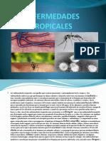 ENFERMEDADES TROPICALES 0.pptx