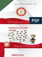 Leccion Emergencia por Abejas.. 2019
