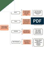 clasificacion de las palabras.pdf