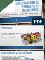 conformación de brigadas de emergencia.docx