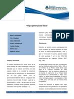 110330_Origen y Biología del Jabalí .pdf