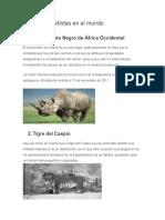 5 especies extintas en el mundo.docx