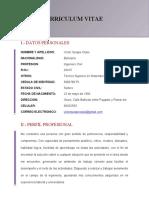 2 Curriculum - Victor Quispe con firma y sello