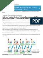 Guía para tramitar Registro Único de Exportaciones RUEX, Declaración Jurada y Certificado de Origen C.O. - Guía