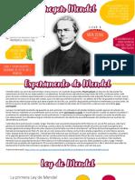 Actividad Mendel.pdf
