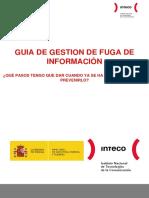 guia_gestion_fuga_informacion