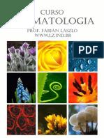Apostila PDF_introd_2015 - Aromatologia - Laszlo.pdf