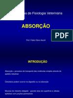 Absorcao.pdf