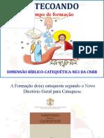 Formação do Catequista segundo o Novo Diretório Geral da Catequese.pptx