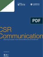 CSRcom_report_2010