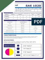 sae+1020+dimecol240f.pdf