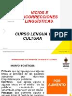 VICIOS E INCORRECCIONES DEL LENGUAJE.pptx