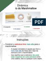 Aula06-Dinamica-Marshmallow.pdf