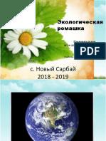 Экологическая ромашка — копия — копия.pptx