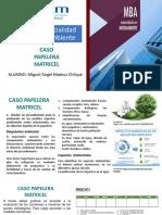 Caso Papelera Matricel - Miguel Angel Mateus Chilque