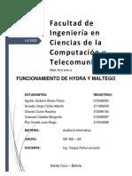 TAREA KALI 02.pdf