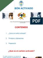 PPT - Carbón Activado 1
