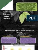 causas externas y internas del cambio climatico4