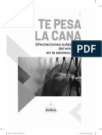 Te_pesa_la_cana._Afectaciones_subjetivas.pdf