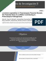 LncRNA y preeclampsia