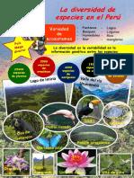 Diversidad peruana