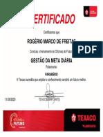 GESTÃO DA META DIÁRIA.pdf