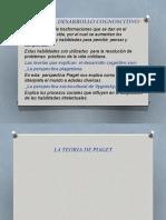 EXPOSICION DE PROCESO COGNITIVO SUGE