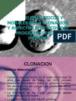 LOS DILEMAS ETICOS Y MORALES DE LA CLONACION Y ASPECTOS BIOETICOS DEL PROGRAMA GENOMA HUMANO