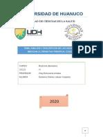 ANALISIS Y DESCRIPCION DE LOS USOS DE LA MEDICINA ALTERNATIVA FRENTE AL COVID-19.docx