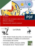II La Célula y Division Celular 2019  primera parte.pdf