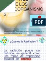 acción de las radiaciones ionizantes en microorganismos