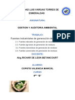 TRABAJO DE INFORME GRUPAL AGROINDUSTRIA