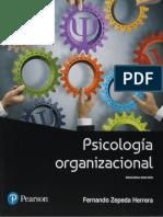 Psicología Organizacional..pdf