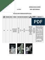 FORMATO DETERMINACION DE MUESTRA (HALITA).pdf