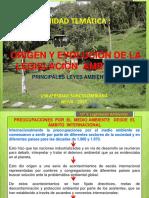 Origen y evolución pples leyes ambientales (1)