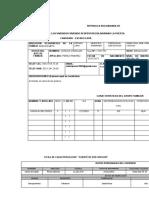 PLANILLAS VIVIENDO DBP - copia
