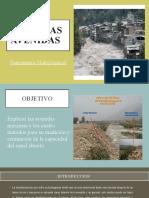 AVENIDAS MAXIMAS EXPO (1) (1).pptx